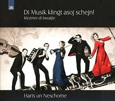 DI MUSIK KLINGT ASOJ SCHEJN! NEW CD