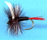 Black Gnat with Red Tail Dry Fly Fishing Flies - Choice of Quantity and Size