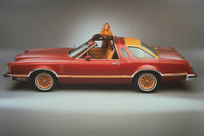"1978 Ford Thunderbird  11 x 14""  Photo Print"