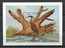 27640) Sierra Leone 1988 MNH New Birds S/S Bf