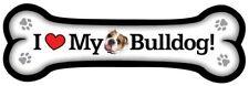 Bulldog-Bone Magnet