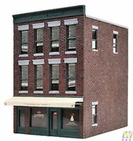 WALTHERS CORNERSTONE HO SCALE 1/87 FLOWERS BY TERRY BUILDING KIT | BN | 933-3473