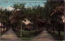 (s05) San Antonio TX: Scene in Miltiary Plaza