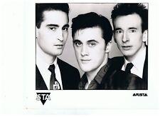 "5TA UK Original Arista Promo Photo 10"" x 8"""