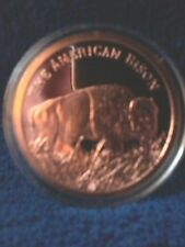 1 OZ COPPER ROUND THE AMERICAN BISON COMM. .999 FINE COPPER IN CLEAR PROTEC CASE