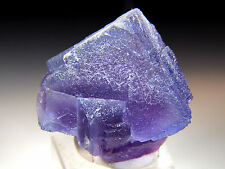 "1.75"" Phantom Fluorite Cubes on Matrix, Bingham, New Mexico! FL2650"