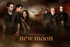 TWILIGHT NEW MOON Poster Cast in Front of Castle New