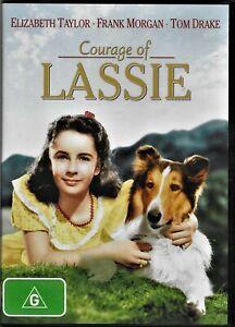 Courage Of Lassie Dvd (Elizabeth Taylor,Frank Morgan) Region 4 Free Post
