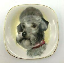 Vintage Porcelain Dish Gray Poodle Schnauzer Schnoodle Dog Crown Staffordshire