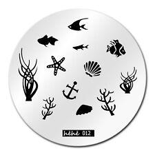 Nail Art Stamping Plates Image Plate Fish Sea life Under the Sea Shells (hehe12)