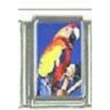Parrot WHOLESALE ITALIAN CHARM in stainless steel 9MM 2017