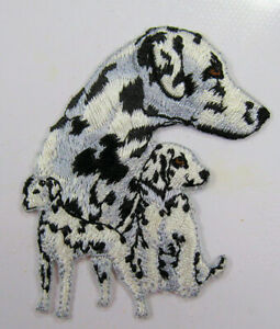 Dalmation dog heat seal embroidered badge