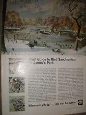 Old art advert Shell guide St james's park S R Badmin print 1965 ref BW
