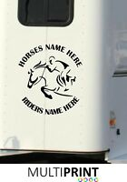 PERSONALISED HORSE NAME RIDER NAME BOX GRAPHICS STICKERS DECALS VINYL DECAL HOR5