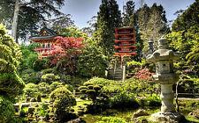 Incorniciato stampa -- grandi tradizionale giardino giapponese (SUNRISE quadro arte cinese)