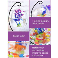 Hanging Glass Aquarium Fish Bowl Tank Flower Plant Vase Iron Stand Holder Decor