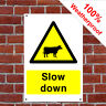 Cattle slow down sign or sticker Health and safety Notice - various sizes COUN07