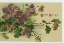 C. Klein, Flowers, Clematis & Hazelnuts Applique Art Postcard, C042