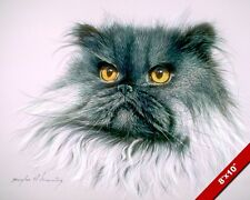 Siberian Long Hair Cat Head Animal Portrait Painting Cats Art Real Canvas Print