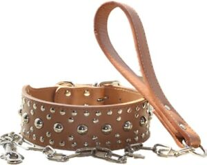 "2"" Leather Studded Dog Collar & Leash set for Medium & Large Pit Bull Terrier"