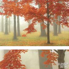 "36""x24"" AUTUMN MIST II by DONNA GEISSLER TRANQUIL DREAMLIKE FOREST SCENE CANVAS"