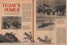 Today's Ponies:Burros, EMPl Sportser,Funco Bandido & Wampuskitty, Kellison, Manx