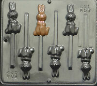 Hopping Bunny Lollipop Chocolate Candy Mold Easter  857 NEW