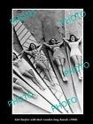 OLD LARGE HISTORIC PHOTO OF GIRL SURERS WITH THEIR WOODEN LONGBOARD c1960