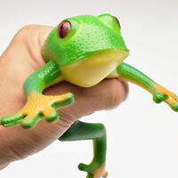 Squishy Antistress Simulation Stretchable Rubber Child Frog Model Spoof Vent Toy