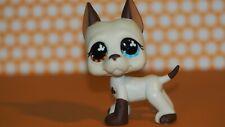 Original Littlest Pet Shop   Hund Great Dane Dog 577