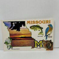 Vintage Postcard Missouri The Cave State