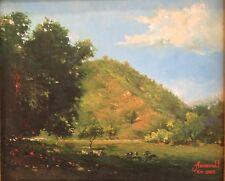 Original Impressionistic Landscape with Mountain signed Amarall Rio 2005 oil/c