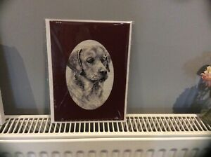 Large Labrador Dog completed cross stitch Card