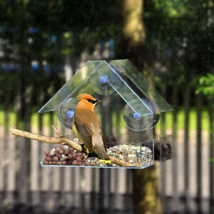 Clear Glass Window Viewing Bird Feed Hotel Table Seed Peanut Hanging Suction AU