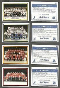 1990-91 Kraft NHL Team Cards Redemption Set of 24, Mint