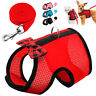 Cat Walking Jacket Harness and Leash Escape Proof Small Dog Mesh Vest for Pets