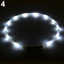 Rechargeable USB Waterproof LED Flashing Light  Pet Dog Collar WHITE - 70CM