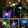 Sn _ Coloré Papillon Libellule LED Léger Solaire Énergie Jardin Noël Décor