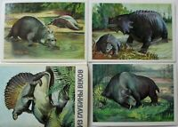 Set RARE! DINOSAUR Paleontology Evolution ANIMALS Paleozoic LOT 16 postcards
