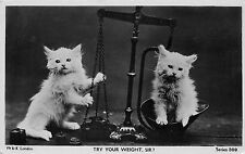 Vintage Cat RPPC, Kittens & Scale, Try Your Weight, Sir? W & K London Series 309