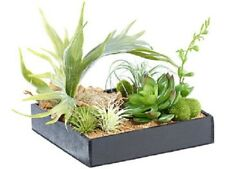 Vertical wandgarten Lena avec decoration-Plantes, 20 x 20 cm