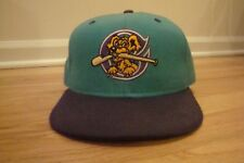 VTG Charleston River Dogs New Era 7 3/8 hat cap 80s 90s retro Wool Teal fitted