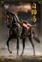 1/6 Scale CW002 Tang Dynasty Hakuho Horse Animal Figure Collectible Gift