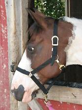 Nylon Webbing Horse Halter Full Size Throat Clip - Pastel Green or Blue