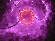 ROSA VIOLA 5m LED STRIP PINK 12V CON ALIMENTATORE