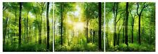 Forest Trees Canvas Wall Art Decor - 24x24 3 Piece Set (Total 24x72 inch)