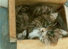 Bcb Maine Coon Cat Cardboard Box Aceo Print of Painting 2 1/2 by 3 1/2 inches