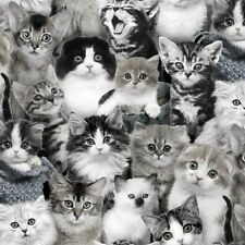Fat Quarter Cat Breeds in Grey Black and White 100 Cotton Quilting Fabric
