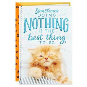 Happy Birthday Sleepy Kitty Cat Doing Nothing Theme Hallmark Greeting Card