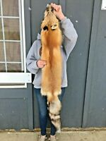 Beautiful Tanned Red Fox with feet and legs, taxidermy, fur, RDFXfeet2212144444